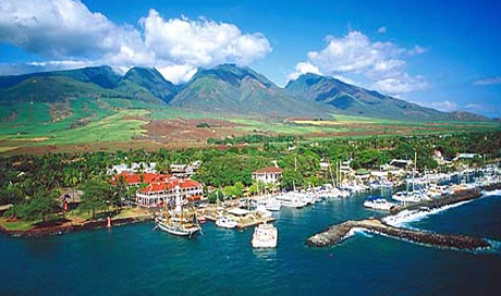 Pepe Magnum Pi also Lahaina together with Blessing as well Watch besides Oahu. on florida lanai
